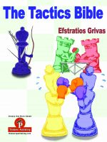 Efstratios Grivas – The Tactics Bible